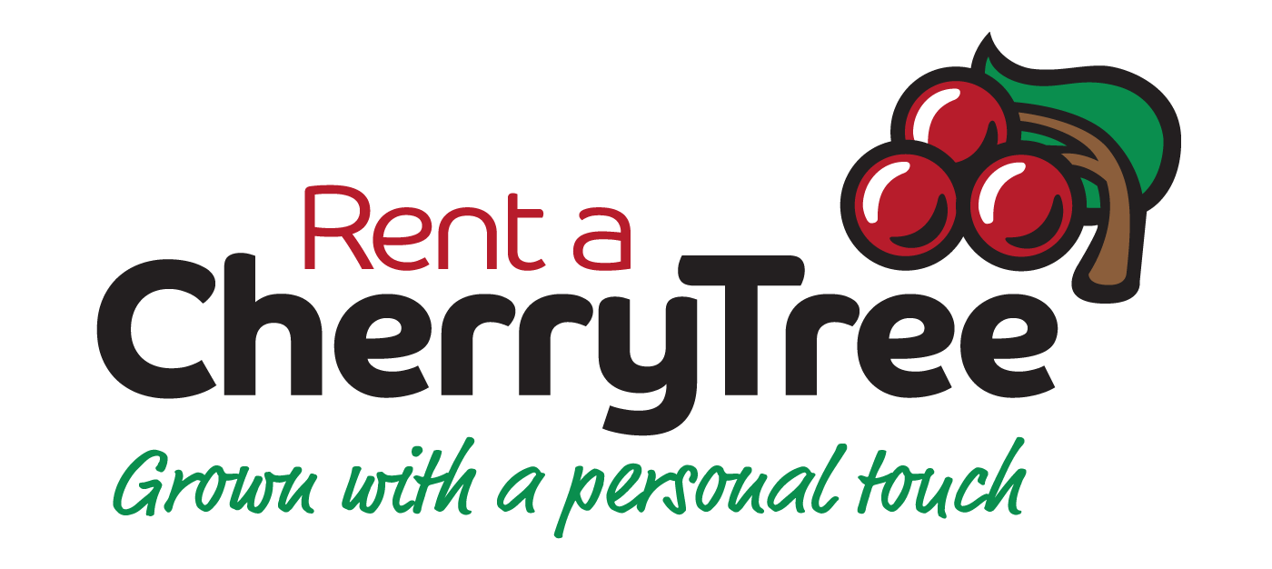 Rent A Cherry Tree - Grown With A Personal Touch